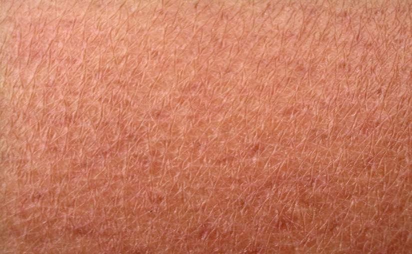 Enfermedades de la piel. Guía completa